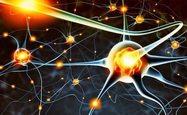 کارگاه آموزشی ژنتیک  دستیابی دانشمندان به 5 ژن جدید عامل بیماری تخریب نورونی آلزایمر 75072226366429216869 600x369