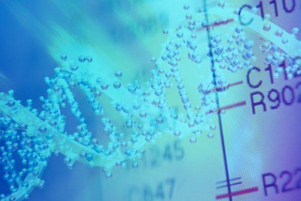 انجام دوره های مقدماتی بیوانفورماتیک bioinformatics 600x400