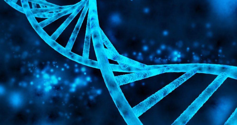 نرم افزار تشخیص سرطان نرم افزار تشخیص سرطان اولین نرم افزار تشخیص و پیشگیری از سرطان oie VDr2364wwgTu