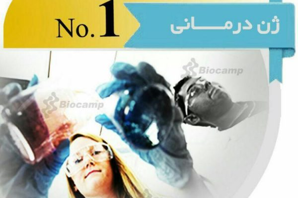 ژن درمانی ژن درمانی چیست؟ - اینفوگرافی ژن درمانی چیست؟ – اینفوگرافی photo 2016 09 01 20 02 13 600x400