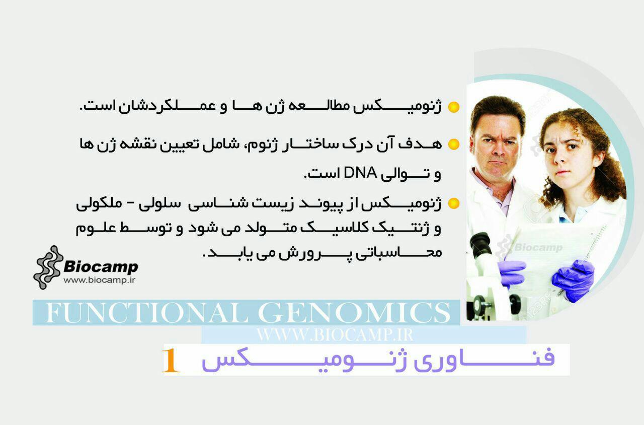فناوری ژنومیکس  اینفوگرافی ژنومیکس چیست؟ photo 2016 09 06 18 52 25