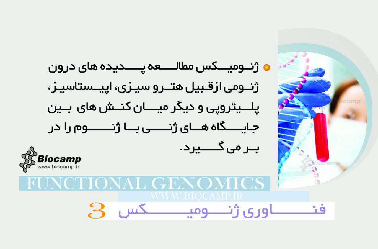 فناوری ژنومیکس  اینفوگرافی ژنومیکس چیست؟ photo 2016 09 06 18 52 30