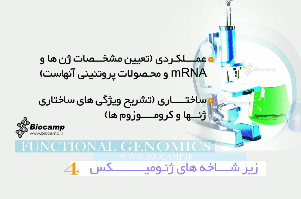 فناوری ژنومیکس  اینفوگرافی ژنومیکس چیست؟ photo 2016 09 06 18 52 31