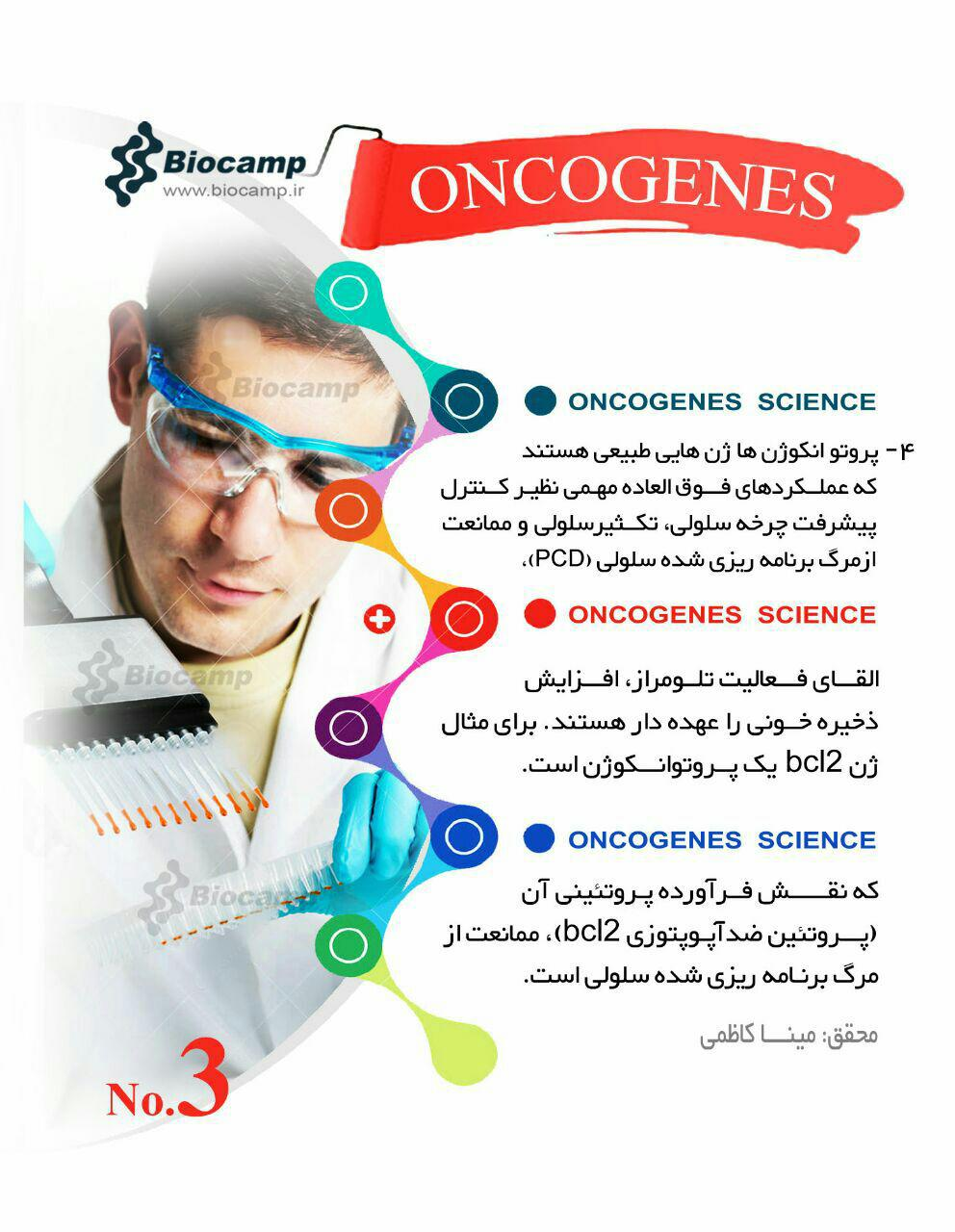 انکوژن انکوژن چیست؟ اینفوگرافی انکوژن چیست؟ اینفوگرافی photo 2016 09 12 21 16 13