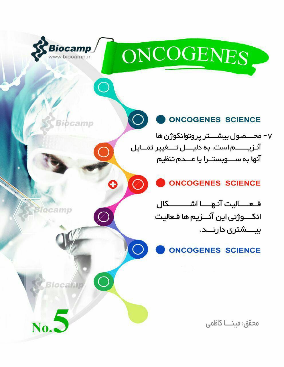 انکوژن انکوژن چیست؟ اینفوگرافی انکوژن چیست؟ اینفوگرافی photo 2016 09 12 21 16 17