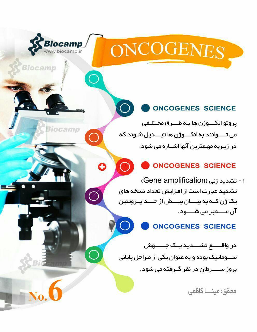 انکوژن انکوژن چیست؟ اینفوگرافی انکوژن چیست؟ اینفوگرافی photo 2016 09 12 21 16 20