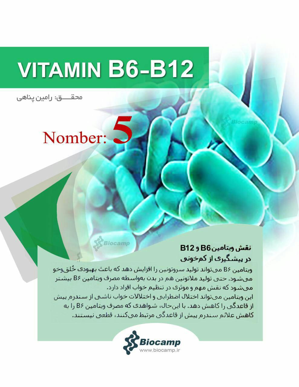 نقش ویتامین ها بر بدن نقش ویتامین های B6 و B12 بر بدن نقش ویتامین های B6 و B12 بر بدن photo 2016 10 03 23 08 42