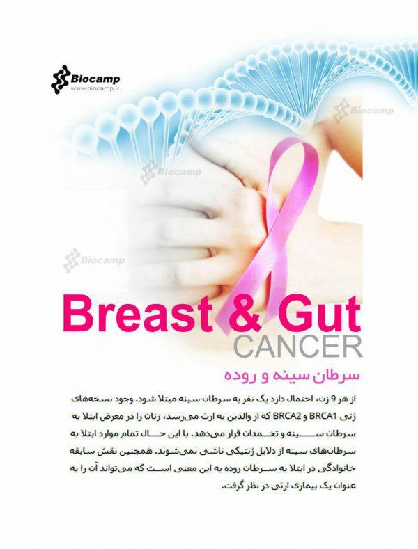در مورد سرطان سینه و روده بیشتر بدانیم