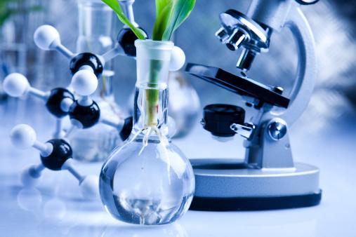 با رشته بیوتکنولوژی و بازار آن آشنا شوید اطلاعاتی در مورد رشته بیوتکنولوژی و بیوانفورماتیک