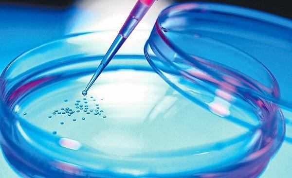 سلول درمانی و سلول های بنیادی سلول درمانی و سلول های بنیادی cjscrt 600x366