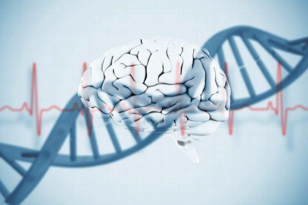 بیوانفورماتیک بیوانفورماتیک مرکز تحقیقاتی ژنتیک و بیوانفورماتیک در کشور 170112110840 1 900x600 600x400
