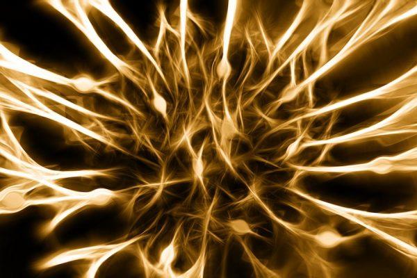 درمان نوروپاتی اعصاب محیطی درمان نوروپاتی اعصاب محیطی nerves 0 600x400