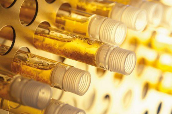 بیوتکنولوژی طلا