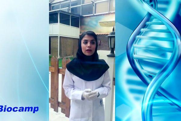 دوره کارآموزی آزمایشگاه تحقیقاتی مجموعه بیوکمپ دوره کارآموزی آزمایشگاه تحقیقاتی مجموعه بیوکمپ                                                                  600x400